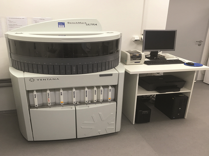 Zavedení fluorescenční imunohistochemie pomocí manuální metodiky a automatu BMK Ultra na pracovišti MDgK-plus